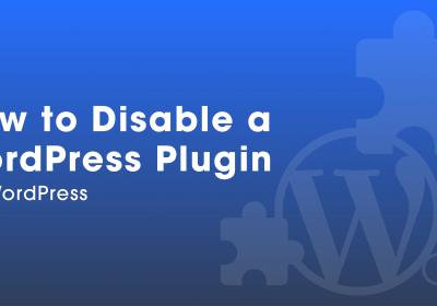 How to Disable a WordPress Plugin via WordPress