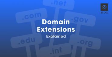 Domain Extensions Explained
